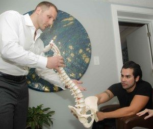 Chiropractic adjustment normalizes neurological input from a spinal column or extremity joint to the spinal cord and brain